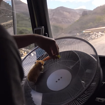 Volvo Trucks take the smoothness of their leads' journeys seriously in this Video Worth Sharing.