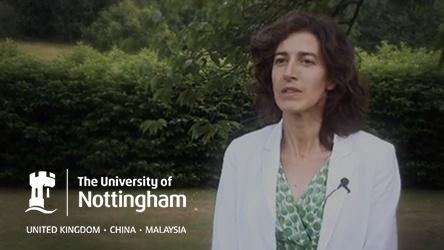 University of Notitngham Summer School CSR Thumbnail